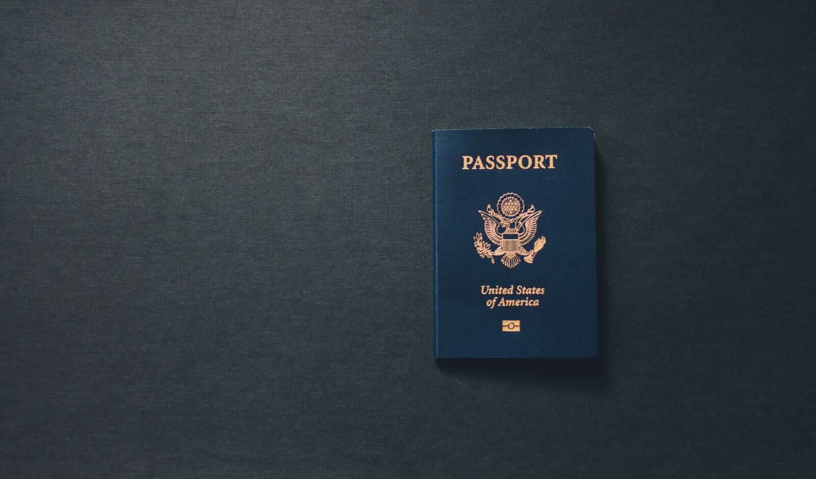 US Passport Grey
